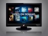 Enorme stijging populariteit Video On Demand