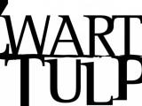 Oerhollandse dramaserie Zwarte tulp exclusief bij Videoland